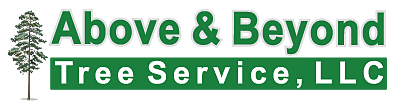 Above & Beyond, Tree Service, LLC