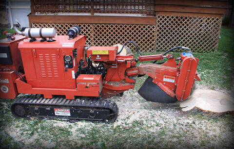 REMOTE CONTROLLED STUMP GRINDER