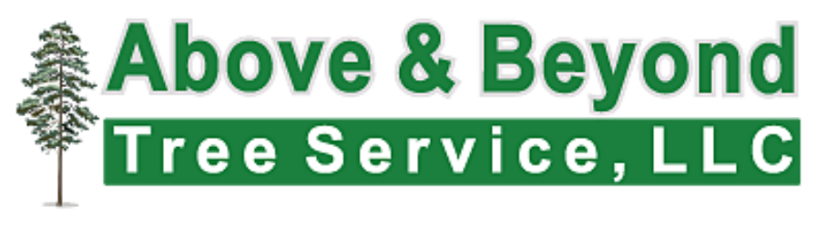 ABOVE & BEYOND TREE SERVICES RI, LLC / Tree Removal & Pruning, Stump Removal & Grinding, Firewood, Bracing & Cabling, Ornamental Shrub Maintenance, General Landscaping, Brush Chipping